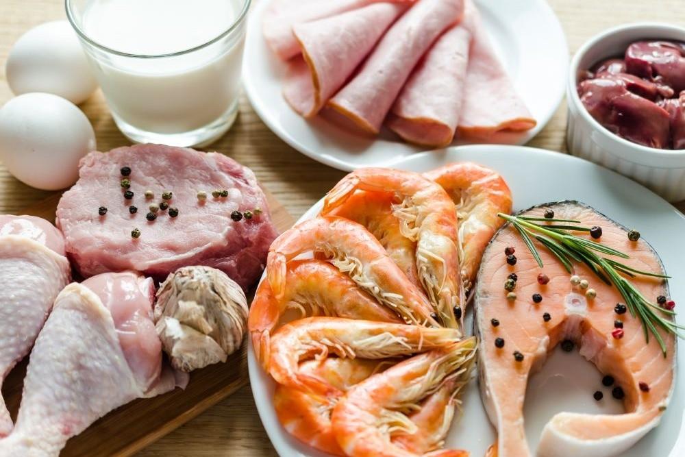 Полезна или вредна белковая диета?