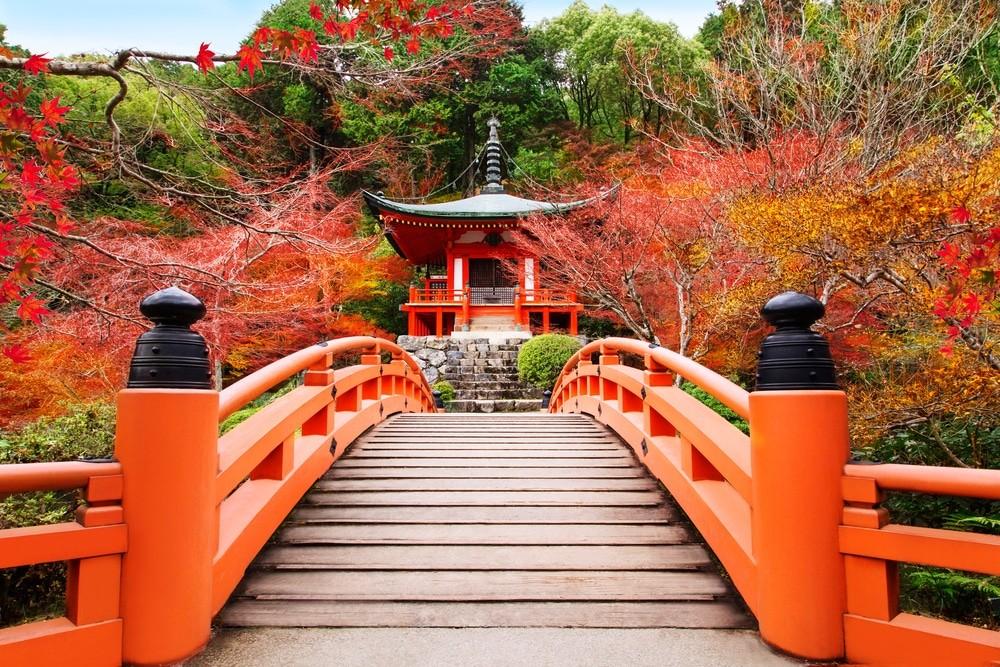 Киото: знакомство за один день