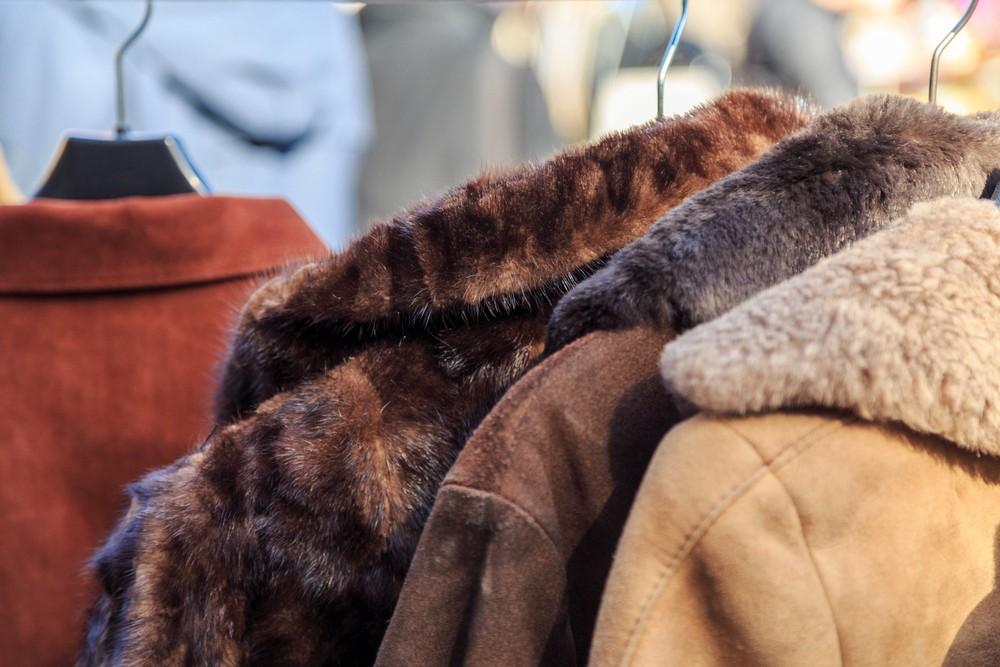 Способы чистки натурального меха в домашних условиях