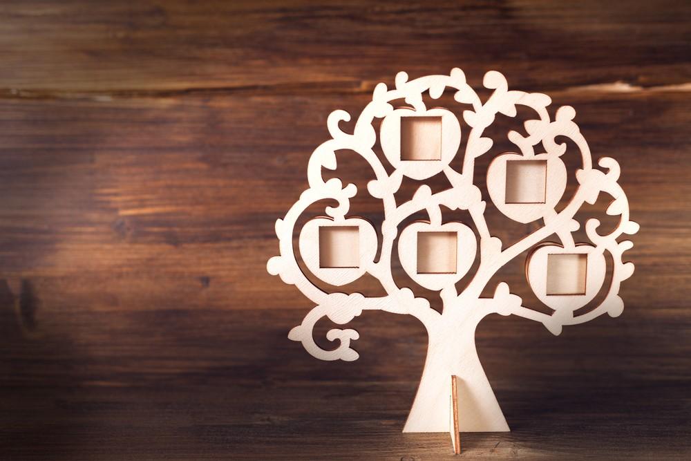 Как создать генеалогическое дерево: нарисуйте семейную историю