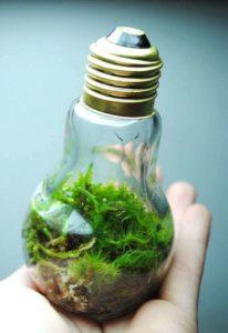 Как использовать старые лампочки