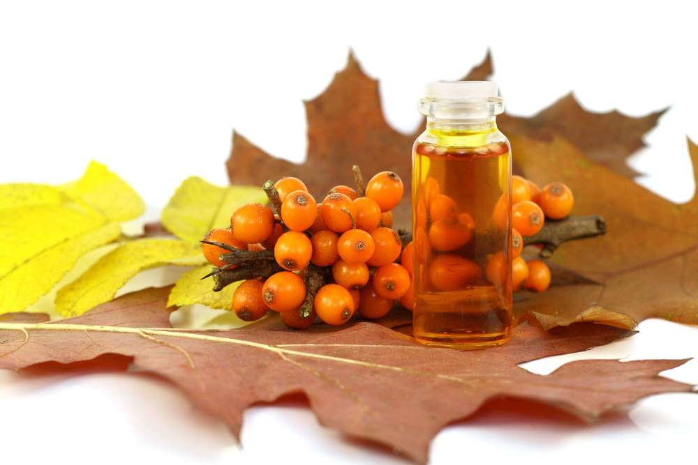 Облепиховое масло: польза и вред